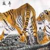 tigres chinois.jpg