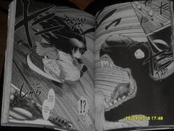 (Chronique de Mylène) Lune de sang T1 - Tomô Maruyama