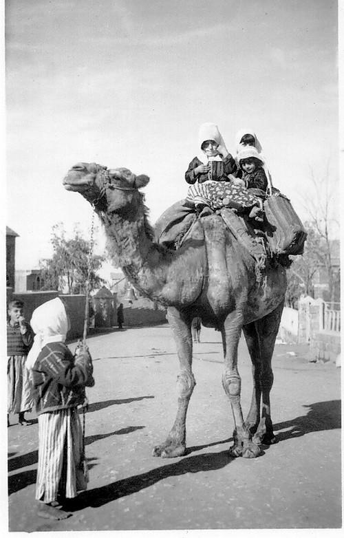 """""""En Syrie avant la seconde guerre mondiale.."""".de très belles photos du père de Jenry Camus"""