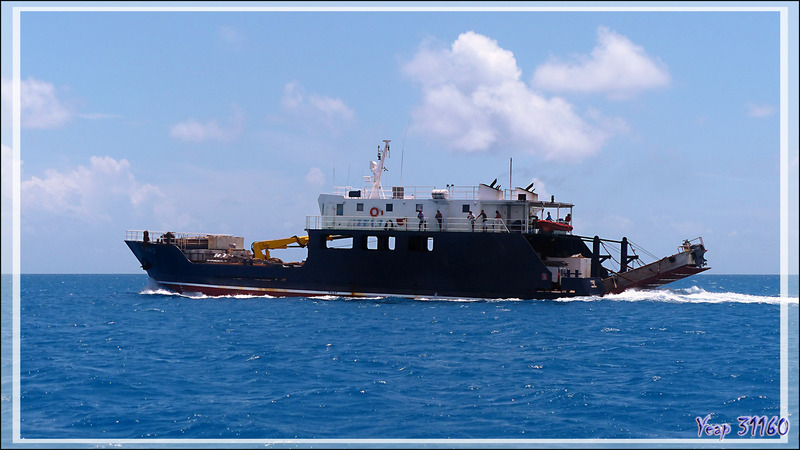 Rencontre avec le Cobia 3, le cargo d'approvisionnement des certaines îles polynésiennes dont l'atoll Fakarava - Polynésie française