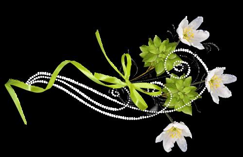 Ornements Floraux Série 43