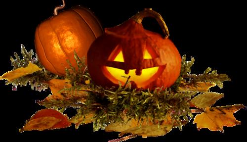 Citrouilles d'Halloween Série 3