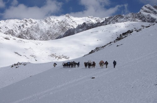 Les Ladakhis et les Baltis d'Inde