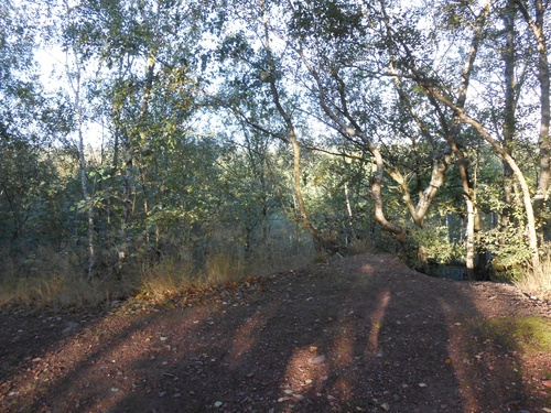 La randonnée des terrils