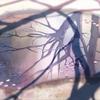 5cm_trailer_1.jpg