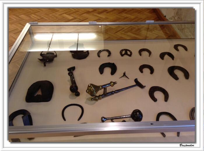 Saumur : Musée du cheval
