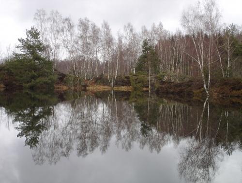Un étang hors du temps