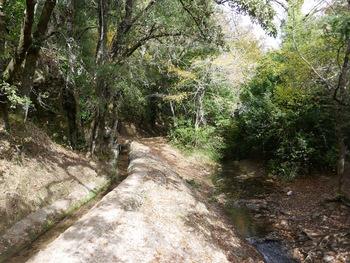 Le canal et, à droite, ce qui reste d'eau dans le Latay