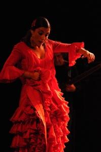 Arte Flamenco - Mont de Marsan