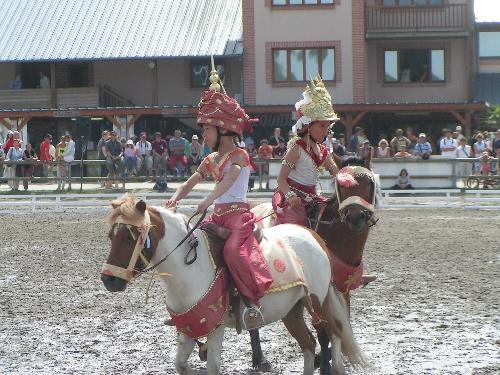 Les Petites Danseuses Apsaras... (médaille d'argent 2007)