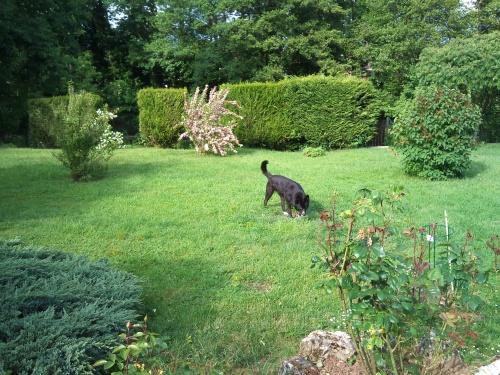 mon jardin secret et moi