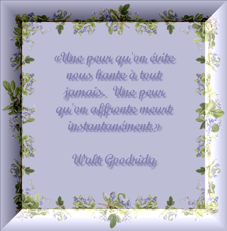 Citation de Walt Goodridge - Mettre en lumière - avec texte
