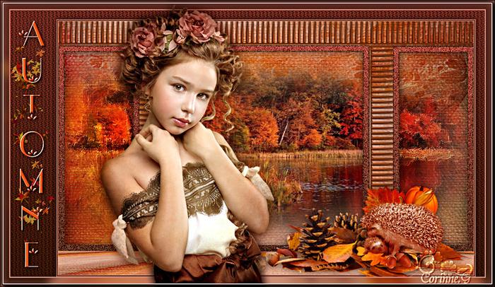 Mist automne 3