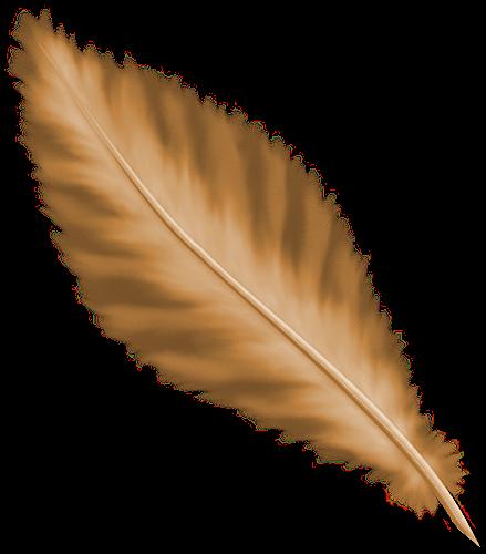 tubes plumes