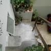 Buenos Aires chez CélinaDSCN0195.JPG