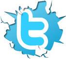 """Résultat de recherche d'images pour """"twitter logo"""""""