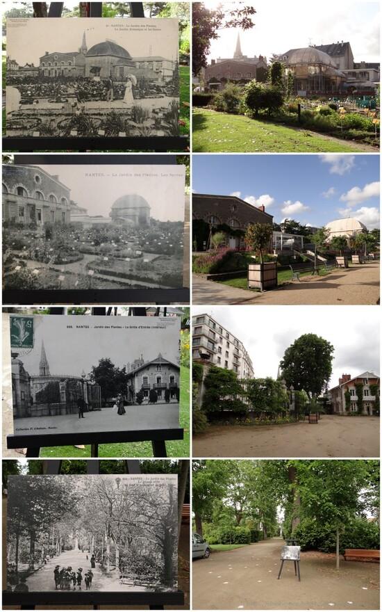 Nantes #6 - Jardin des Plantes