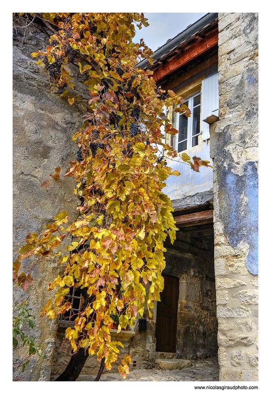 La Montagne du Poët - Drôme Provençale