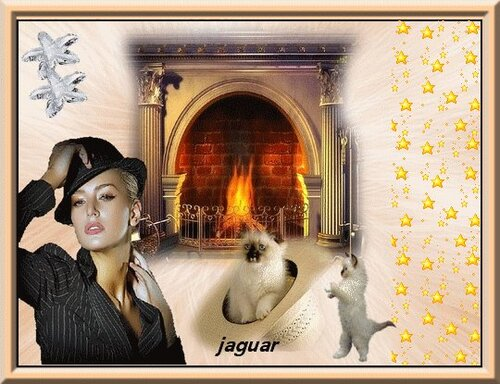 mon ami Jaguar