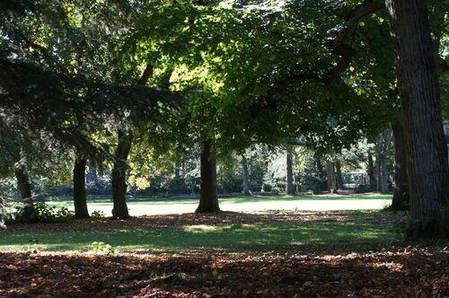 Le Parc du Hutreau