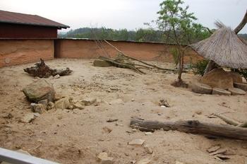 Zoo Osnabruck d50 2012 060