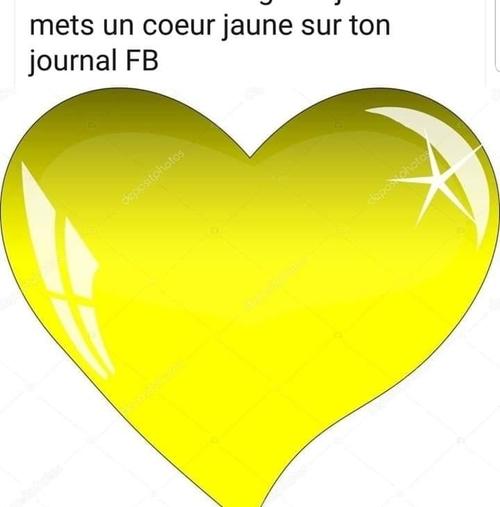 vive les gilets jaunes