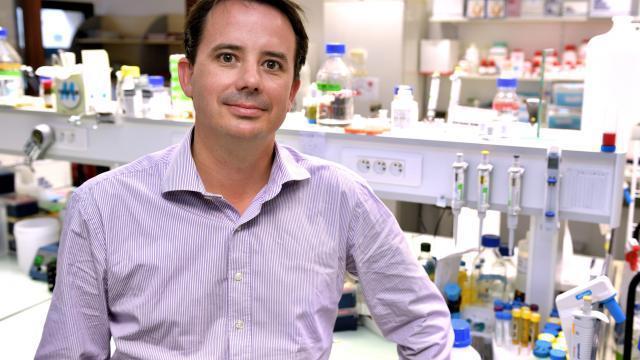 photo le pr bertrand cariou, diabétologue à nantes, est conseiller scientifique pour nash education programm, une nouvelle fondation qui a pour but d'informer sur la nash, la maladie du foie gras. © dr