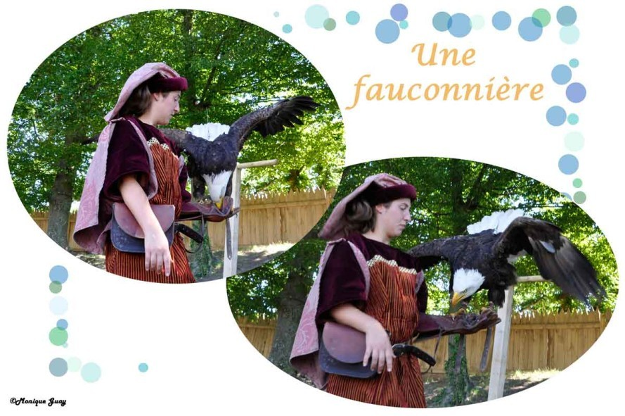 fauconnière-1