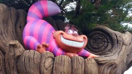 Mes premiers pas à Disneyland Paris et la suite