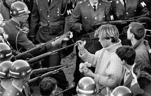 la fleur au fusil oups pistolet
