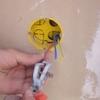 dénuder fils électrique