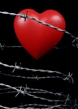 Coeur protégé ...