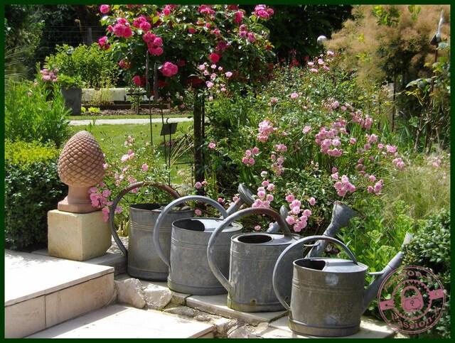 le jardin de Denise