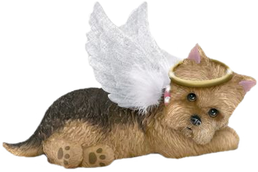 ANGEL FURBABY .png