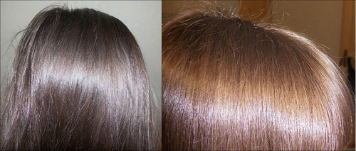 Le soin des cheveux Phyto gloss