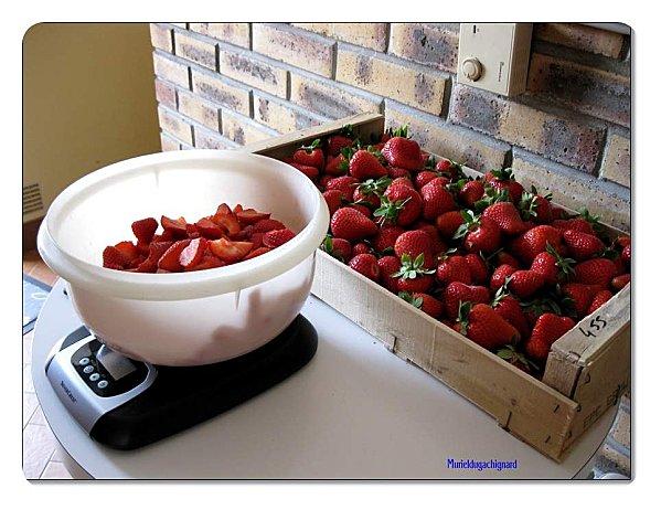 Fruits-2011-1153.JPG