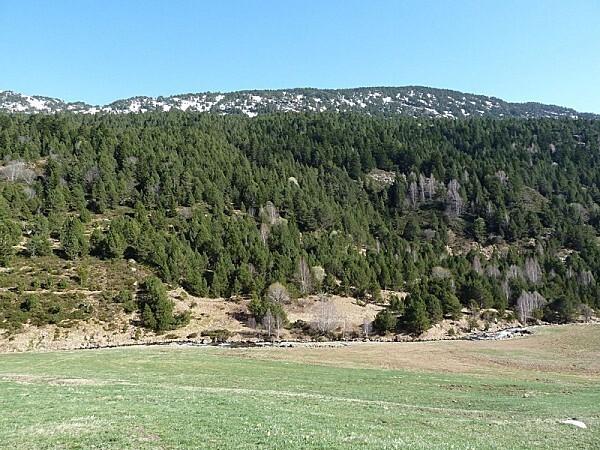 0 P Andorre (13)