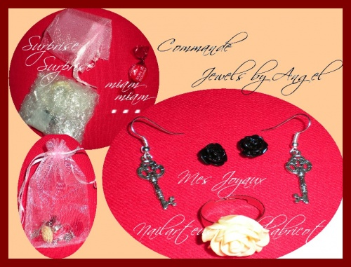 Commande chez Jewels by Angel