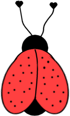 Coccinelles