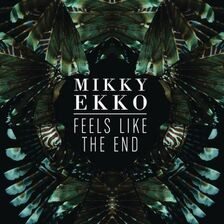 """Résultat de recherche d'images pour """"mikky ekko feels like the end"""""""