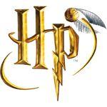 """Un anniversaire """"Harry Potter"""" pour mon sorcier"""