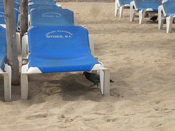 Îslas Baleares Mallorca 012