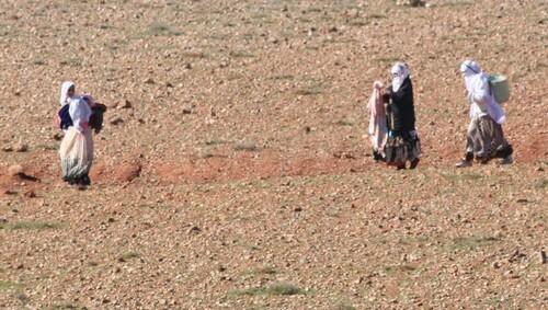 1er février, de Goulimine à Tafraoute