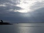 "Phillip Island et la ""Penguin Parade"""