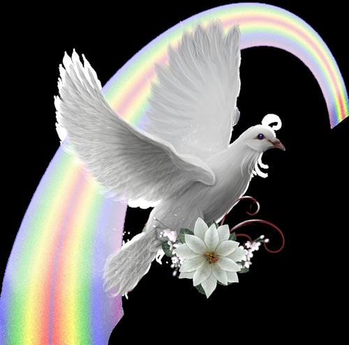 Bien-aimé Un colombe pour la paix - La Vie Est Belle VV67