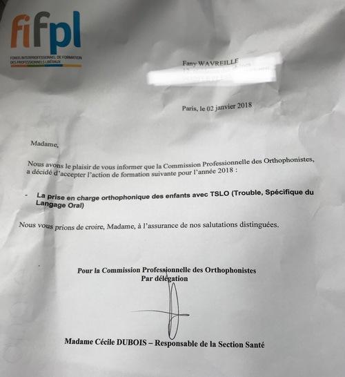 FIF-PL 2018