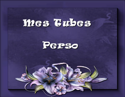 TUBES PERSO