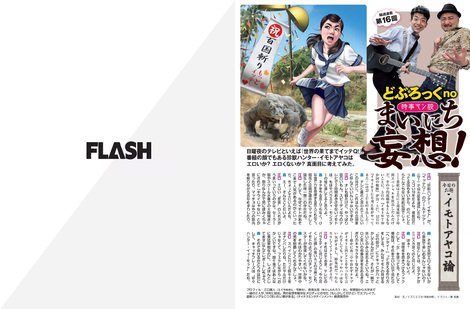 Magazine : ( [Flash] - |14/03/2017| )