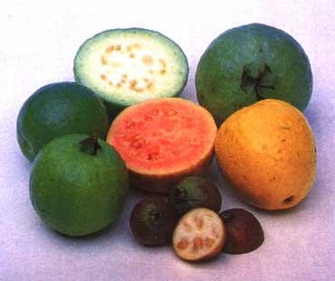 fruits africains