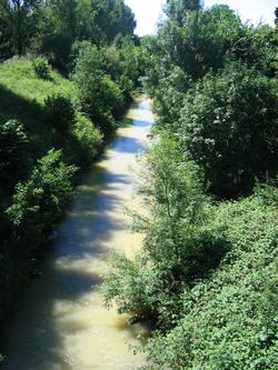 Chemin d'Arles 2008 - Basiège (25km)